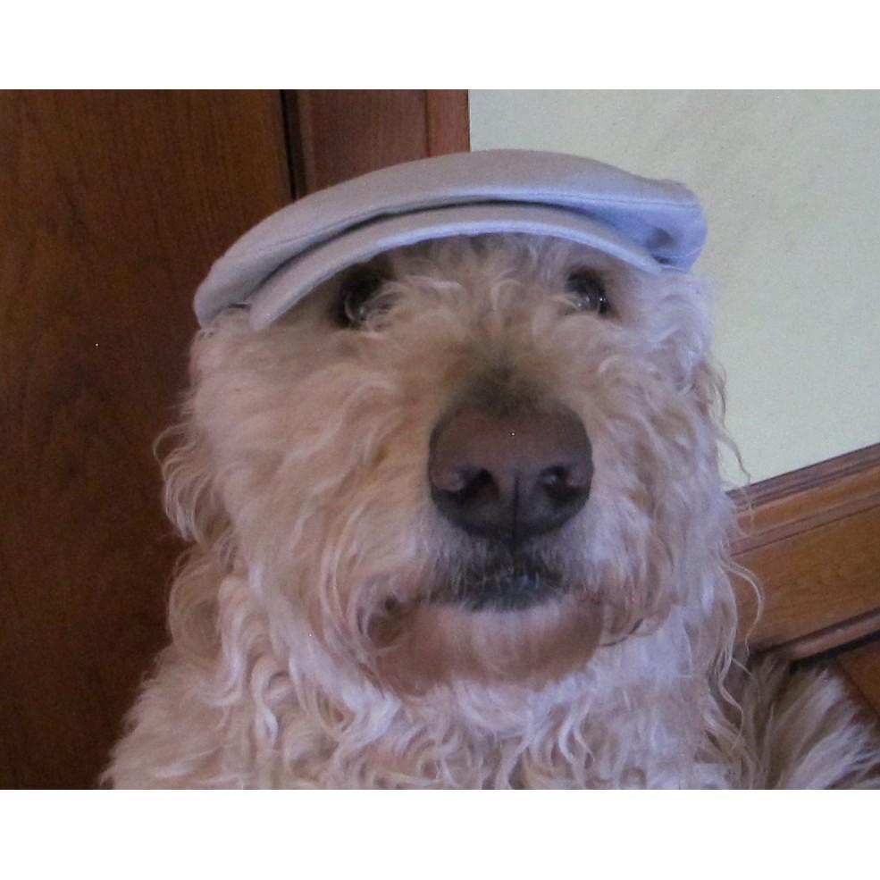 Hanna Hats Irish Linen Daithi Cap (Light Grey)