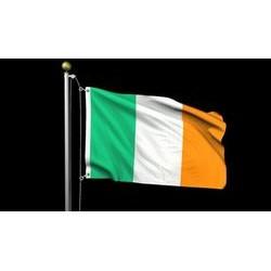Burke and Hogan Irish Flag Outdoor