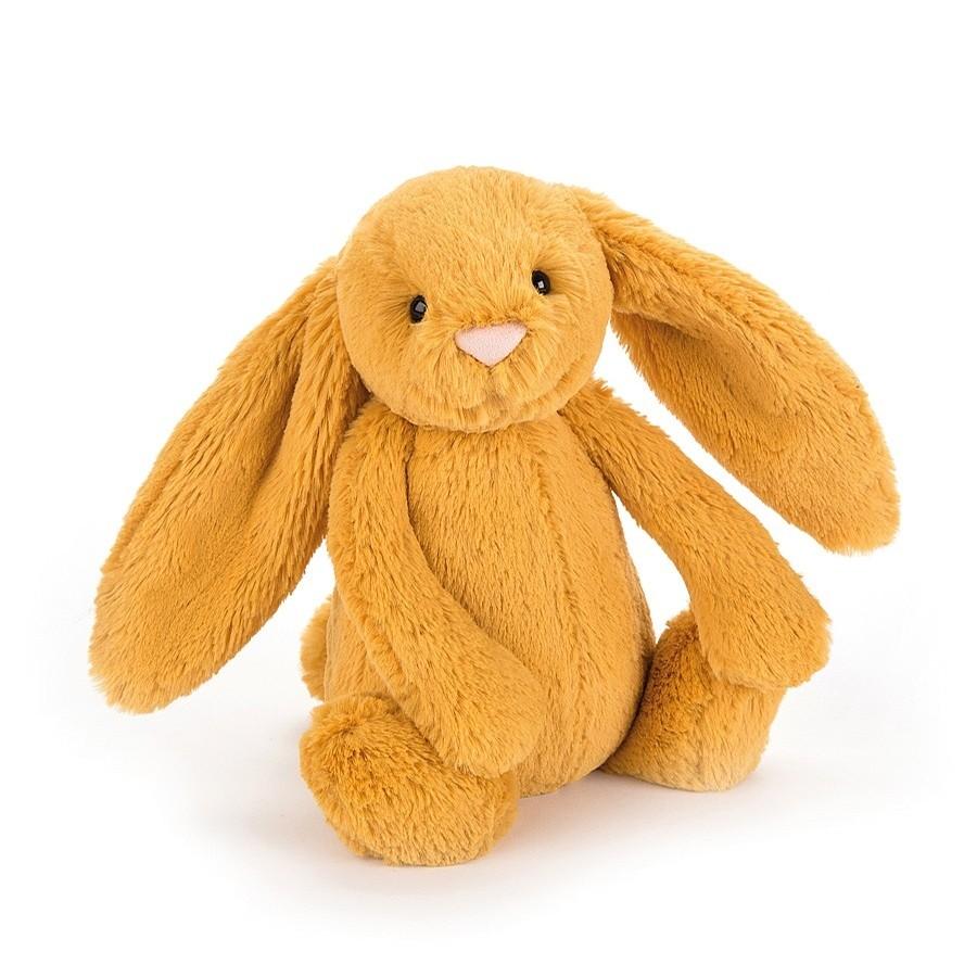 Bashful (Bunny Saffron)